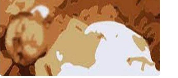 যশোর বাঘারপাড়ায় দেয়াল চাপা পড়ে শিশুর মৃত্যু
