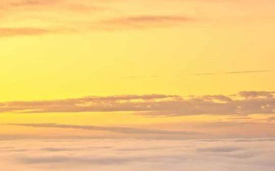 ম্যানেজার অপহৃত, জেলা আ.লীগ সম্পাদক মুজিবের মৎস্যঘেরে হামলা লুটপাট, গুলিবর্ষণ